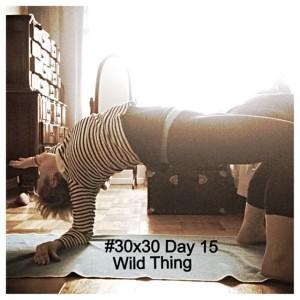 #30x30 Day 15 - Wild Thing