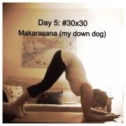 #30x30 Day 5: Dolphin